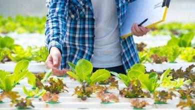 Photo of أهم تطبيقات انترنت الاشياء في الزراعة 2020